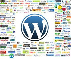 Social networking wordpress