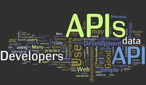 WP plugin API